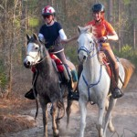 Cypress Trails Ranch Lessons & Training