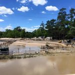 Cypress Trails Ranch - April 2016 Flood Cleanup