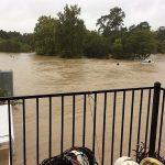 Darolyn Butler - Houston - Hurricane Harvey