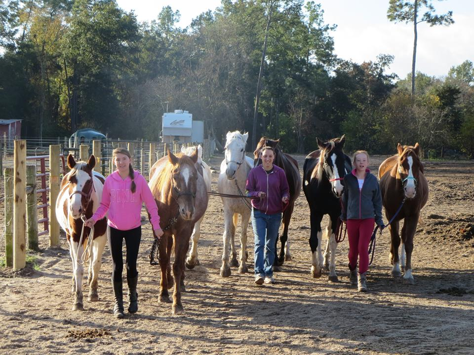 Adventure Trail Rides Horseback Riding | Cypress Trails Ranch
